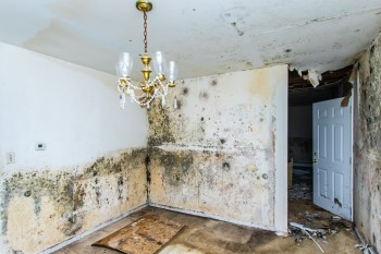 Water Damage Claims  – Residential burst pipes